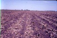 Bob Choulson farmland