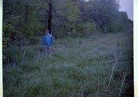 Man in Blue Jacket Walks Beside Woods