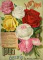 Iowa Seed Company Catalog 1894