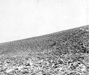 Surface of an alluvial fan at the foot of the Sierra Mountains in Owens Valley, Calif., late 1890s or early 1900s