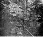 Cliff of Carboniferous sandstone in Wild Cat Den State Park, Iowa, late 1890s or early 1900s