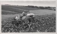 Scenes from Arlie Tillotson's Farm.