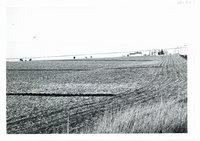 Robert Horst farm contour strip cropping, 1964