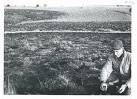 Glen Eads farm pasture renovation, 1965