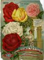 Iowa Seed Company Catalog 1909
