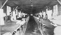 France treating gassed soldiers in the ward in the picture above