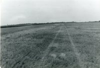 TOT Site before Construction