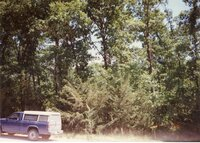 1996 - Photos of Shining Trail Girl Scout Council  (GSC) Camp La-Kee-Ta in Danville, Iowa