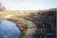 1999 - Willow Stake Planting on Richard Osborn farm