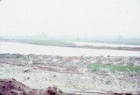 Flooded cropland, 1984