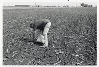 Man in field with bag