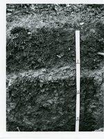 Soil survey, 1969