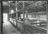 County Farm hog house interior