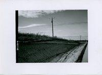 Road cut, 1965