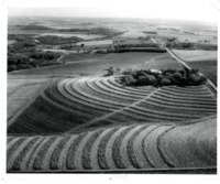 Contour Farming on the farm of the late Clarence Pellett.