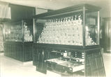 Display of birds in the Natural History Museum, Macbride Hall, The University of Iowa, 1900s