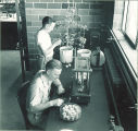 Botany students working in a lab, The University of Iowa, 1950s