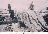 Fur skins and cloths hanging on rack, China, 1944