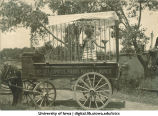 Class of 1902 carnival wagon for Senior Frolic, The University of Iowa, 1902