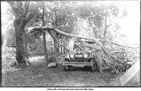 Dean G. F. Kay's car, after wind storm, Tourist Park, Chariton, Lucas County, Iowa, June 27, 1924