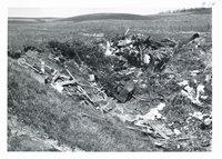 Erwin Jepsen farm gully before trash removal, 1966