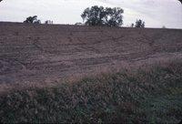 Cropland after harvest, 1983