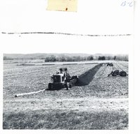 Tiling Gregory Kueter farm, 1962
