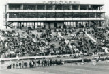 Bleachers filling up at Homecoming, 1970