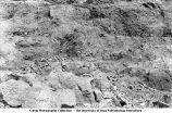 Devonian dolomite in quarry north of bridge, Forreston, Iowa, late 1890s or early 1900s