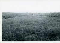 J.K. Tebben farm, 1967