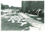 Cleanup after flooding of Theatre Building, The University of Iowa, June 1962