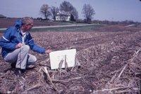 Jack Nutting no-till cropland, 1983