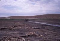 Soil Erosion, 1986