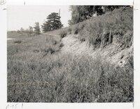 1970s Hillside erosion