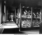 Museum cases in Calvin Hall, The University of Iowa, 1904