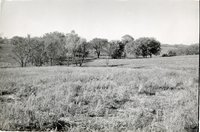 Unidentified Field in Bloomfield Township
