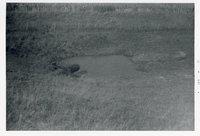 Big Wyacondah Watershed, Site 27-L