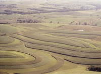 County farm, 1995