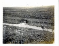 TOT on Havran farm, 1974