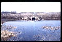 Wisconsin Tube - Farm Drainage System.