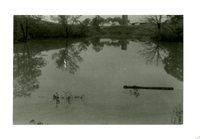 Spillway Between Farm Ponds
