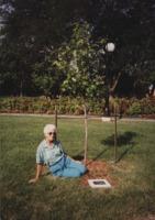 Lester Davison's Memorial Tree.