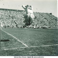 Cheerleader at Iowa football game, The University of Iowa, 1947