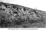 Oblique bedding with beds dipping northeast, LeClaire, Iowa, late 1890s or early 1900s