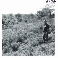Ray Stillmunkes touring gully before conservation construction, 1969