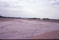 Standing water in brown field