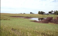 Wetland Project on Jeff Morrison's Farm.
