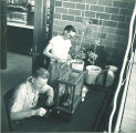 Botany students in lab, The University of Iowa, 1950s