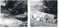 Waterway on Bill Bruck's farm, 1963