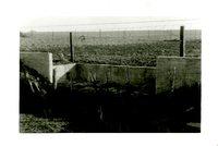 J.W. Robertson Wall, 1959